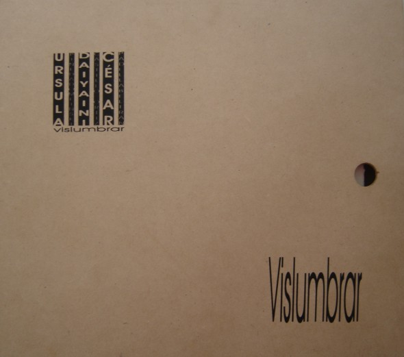 Colectivo (vislumbrar) Libro Arte