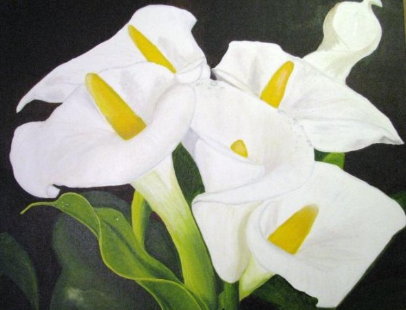 Imagenes De Flores Pictures, Images & Photos | Photobucket
