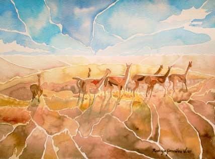 Llamas Pastando