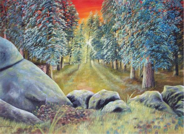 Rocas en el bosque
