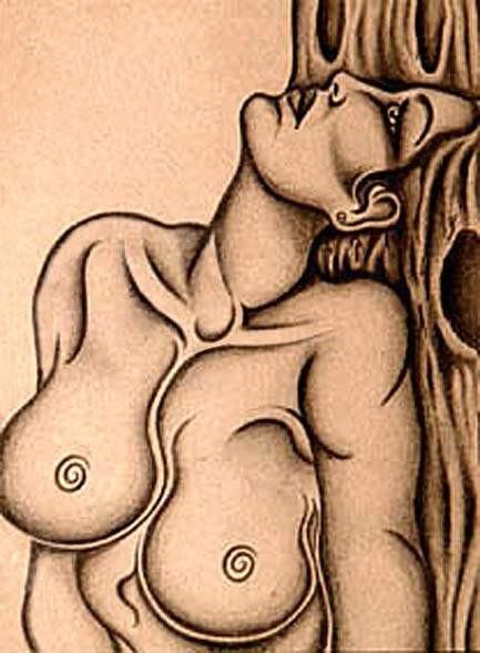 Obra de arte mujer arbol Artistas y arte Artistas de la tierra
