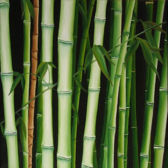 bambú II