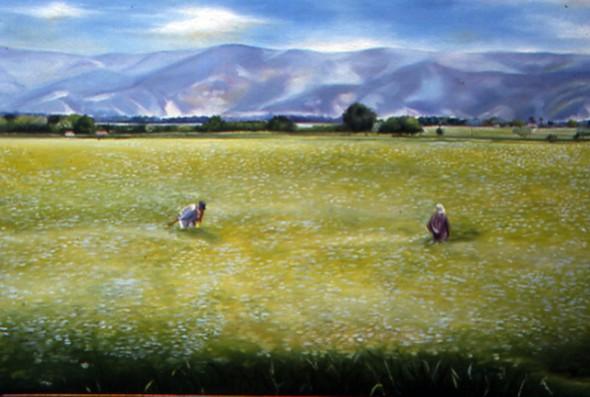 De la serie paisaje vallecaucano