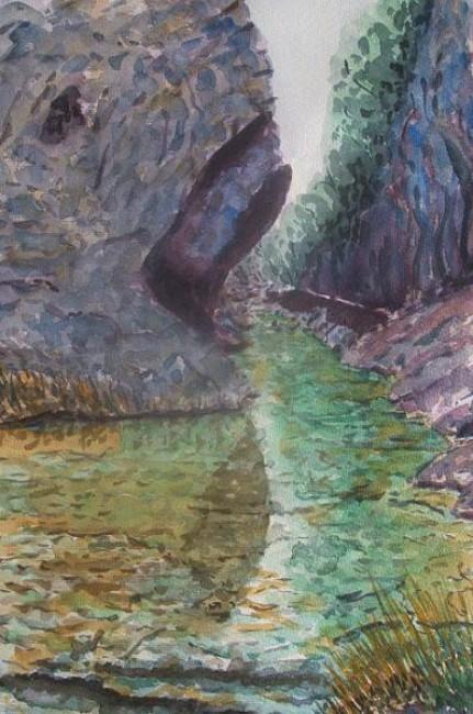 Río Borosa 5.