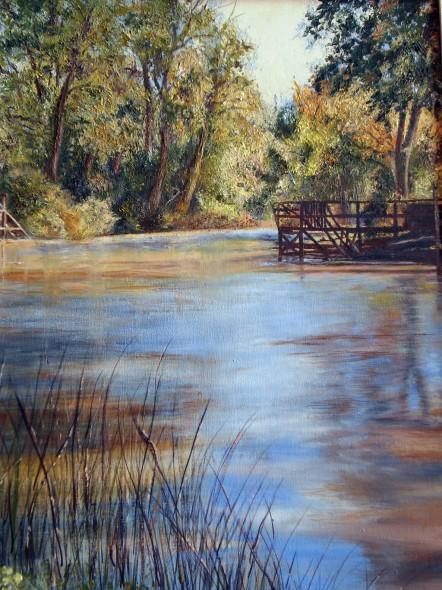 Aguas del Delta