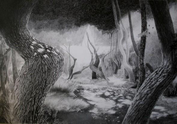 Bosque encantado dibujo - Imagui