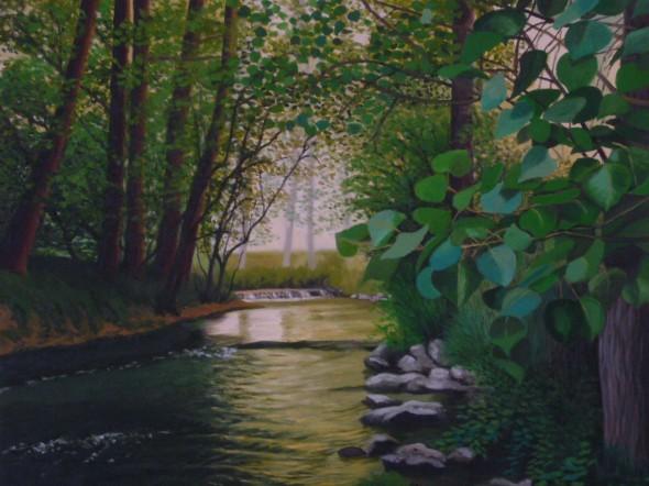 Curso del rio entre luces y sombras