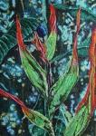 Obras de arte: America : Colombia : Distrito_Capital_de-Bogota : Bogota : Serie (Heliconias)