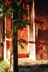 Obras de arte: America : Argentina : Buenos_Aires : Capital_Federal : Gato al amanecer