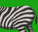 Obras de arte: America : Perú : Lima : miraflores : Culo de Cebra
