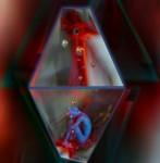 Obras de arte: America : Argentina : Neuquen : neuquen_argentina : BIO/VIDA+ARTE