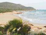 Obras de arte: Europa : Espa�a : Murcia : cartagena : playa de almu�ecar