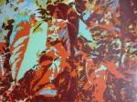 Obras de arte: America : Colombia : Antioquia : Medellín : sin título