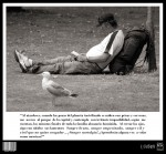 <a href='https://www.artistasdelatierra.com/obra/104225-PROYECTOS-INDEPEN-DIENTES-%282010%29%3A-La-Extinci%C3%B3n.html'>PROYECTOS INDEPEN-DIENTES (2010): La Extinción » Daniel  Yáñez González-Irún<br />+ M�s informaci�n</a>