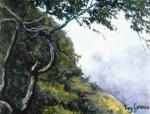 Obras de arte: America : Colombia : Cundinamarca : BOGOTA_D-C- : PÁRAMO