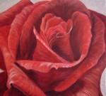Obras de arte: Europa : España : Comunidad_Valenciana_Alicante : Elda : rosa