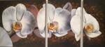 Obras de arte: Europa : España : Comunidad_Valenciana_Alicante : Elda : Orquideas triptico
