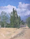 Obras de arte: Europa : España : Madrid : Miraflores_de_la_Sierra : REFLEJOS DE VERANO