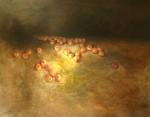 Obras de arte: Europa : España : Navarra : tudela : manzanas