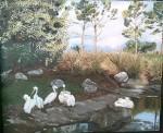 Obras de arte: America : Argentina : Tierra_del_Fuego : Ushuaia : Pelicanos