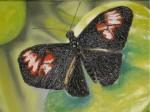 Obras de arte: America : El_Salvador : Santa_Ana : santa_ana_ciudad : Un descanso en el Jardin