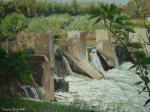 Obras de arte:  :  :  :  : Atardecer en la represa
