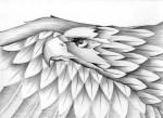 Obras de arte: America : México : Tlaxcala : Tlax : Aguila 1