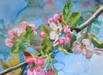 Obras de arte:  : Suiza : Bern : Bern_ciudad : Flores de Manzana