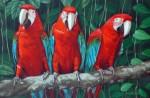 Obras de arte:  :  :  :  : GUACAMAYOS II