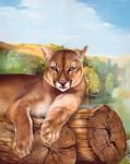 Obras de arte:  :  :  :  : Puma 1
