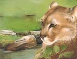 Obras de arte:  :  :  :  : Puma 3