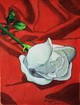 Obras de arte:  : España : Valencia : valencia_ciudad : Rosa blanca