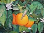 Obras de arte: Europa : España : Andalucía_Almería : Vera : Tres naranjas y una langosta