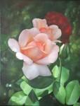 Obras de arte: Europa : Francia : Ile-de-France : Versailles_ciudad : rosas en el jardin 4