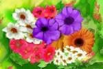 Obras de arte:  : Brasil : Espirito_Santo :  : Tempo de flores