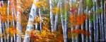 Obras de arte: America : Colombia : Antioquia : Medellin : COLORES DE OTOÑO