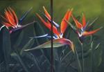 Obras de arte: America : Colombia : Antioquia : Medellin : DÍPTICO AVES DEL PARAISO