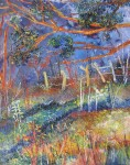 Obras de arte: America : Colombia : Santander_colombia :  : Bosques de Charta
