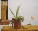 Obras de arte: Europa : España : Islas_Baleares : palma_de_mallorca : Los dias pasan.Pintura al natural.A tamaño real.