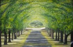 Obras de arte:  : España : Catalunya_Barcelona : Barcelona : Las acacias