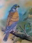 Obras de arte:  : Nicaragua : Managua :  : Pájaro