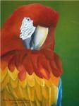 Obras de arte:  : Panamá : Colon-Panama : Panamá_Ciudad : Aves