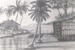 """Obras de arte:  : Rep_Dominicana : Duarte : San_Francisco_de_Macoris : """"EL ESTERO DE NAGUA"""""""