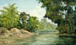 Obras de arte: America : Colombia : Cundinamarca : BOGOTA_D-C- : 0701-06-0131 Río Claro, Antioquia