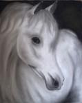 Obras de arte: America : Colombia : Distrito_Capital_de-Bogota : Bogota : Caballo blanco