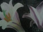 Obras de arte:  : México : Mexico_Distrito-Federal : Centro : flores