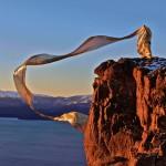 Obras de arte: Europa : Argentina : Rio__Negro : Bariloche : polinizando desde el nahuel