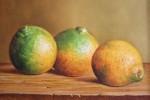 Obras de arte:  : Colombia : Antioquia : Medellin : naranjas
