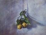 Obras de arte: America : Chile : Araucania : temuko : Limones