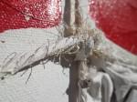 Obras de arte:  : Espa�a : Islas_Baleares : palma_de_mallorca : tendones 1